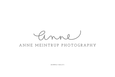 Anne Meintrup logo by SIMPLE SALLY DESIGNS